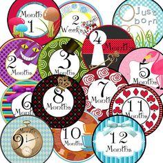 14 Alice in Wonderland Inspired Baby Girl Monthly Milestone Onesie Stickers Newborn Shower Gift on Etsy, $9.25