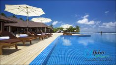 Top 5 Best Family Resorts in the Maldives Maldives Family Holiday, Maldives Family Resorts, Maldives Luxury Resorts, Best Family Resorts, Maldives Holidays, Visit Maldives, Maldives Resort, Best Resorts, All Inclusive Resorts