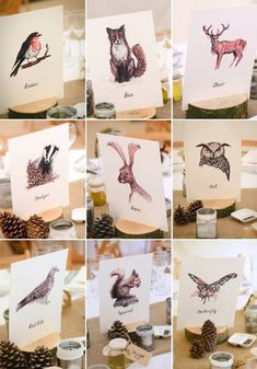 From exotic animal centrepieces to quirky wedding cake toppers and table plan ideas, here& ow to have a fun, animal-themed wedding. Wedding Table Toppers, Wedding Table Themes, Wedding Decorations, Wedding Ideas, Wedding Table Plans, Wedding Table Markers, Wedding Cards, Wedding Events, Themed Weddings