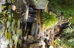 77 best cottage pond images on pinterest backyard ponds for Koi pool water gardens thornton