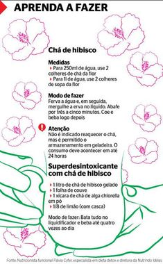 PLantas de hibisco chá - Pesquisa Google Healthy Lifestyle Tips, Healthy Tips, Healthy Recipes, Dont Ever Give Up, Stress Less, Detox Recipes, Herbal Medicine, Drinking Tea, Natural Health