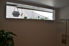 Cure for a boring window outlook! #succulents #hanging #baskets #pots