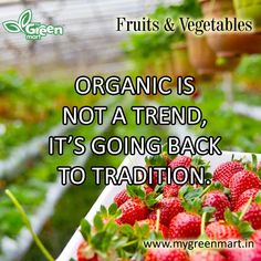 ORGANIC IS NOT A TREND, IT'S GOING BACK TO TRADITION. Green Organics, Traditional, Fruit, Vegetables, Gallery, Food, The Fruit, Veggies, Veggie Food