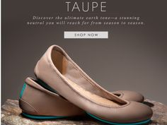 Tieks! This is my dream shoe! I want in neutral (camel or taupe) and red patent.  I LOVE my black matte. Really don't think I would settle for a dupe.