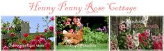 sand in the coop;  Henny Penny Rose Cottage