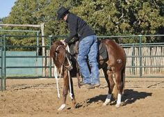 Your First Ride: Mounting and Flexing | @EquiSearch.com