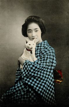 geisha-kai: Geisha with a white cat, 1905 by on. Colorized Photos, Photo Chat, Portrait Pictures, Tier Fotos, Cat People, Japanese Kimono, Japanese Cat, Japanese Geisha, Old Postcards