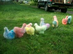 Colored silkies - Ryan would kill me if I suggested this!! They look like walking skittles