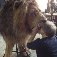 """Gefällt 26 Mal, 1 Kommentare - Chris Kunzmann (@chriscreatures) auf Instagram: """"Lionkiss our first animatronic lion. #creatures #lions #animatronics #sfx #printing #fur…"""""""
