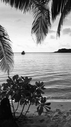 Snow Night, Black Shades, Nature Gif, Cute Love Cartoons, Beautiful Nature Scenes, Beach Wallpaper, Black Aesthetic Wallpaper, Paradise Island, Travel Scrapbook