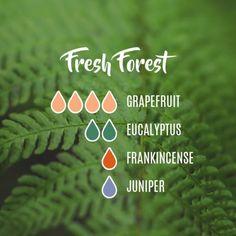 Essential oil difffuer for Fresh Air _grapefruit,eucalyptus,frankincense,juniper