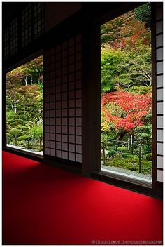 Inside of temple in Japan. I like the shoji screens and the feeling of serenity.