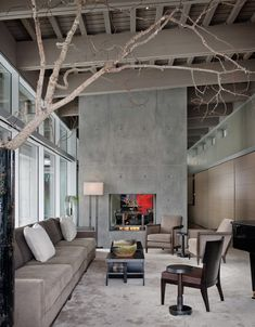 Solid Simple Concrete Fireplace, color scheme concrete-gray and griege-matching-tree-branch