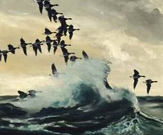 When the tide was up, the Brent geese flew along the shore, often hidden by the breaking waves