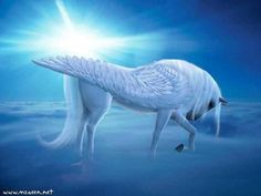 White horse with wings
