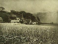 George Davison-The Onion Field - Pictorialismus – Wikipedia