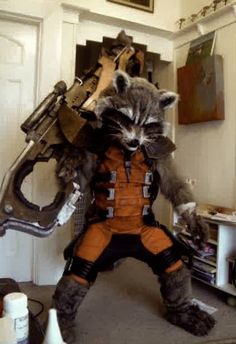 Rocket Raccoon (Guardians of the Galaxy) | Source: Warren Goodwin