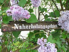 Inspirational Im Garten finden sich jetzt wieder allem glichen Mitbewohner ein Ich wollte eigentlich meinen Betonblumentopf knipsen