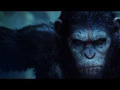 """Primer trailer en español de """"El Amanecer del Planeta de los Simios""""."""