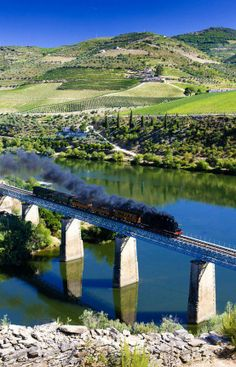 Viagem de trem pelo Vale do Douro, Portugal.