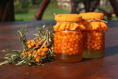Homoktövis mézben Health And Beauty, Carrots, Remedies, Tasty, Herbs, Diet, Vegetables, Food, Website