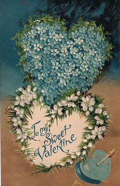 sweet valentine forget-me-nots