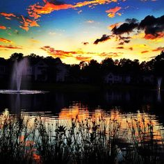 #naturelovers #carolina #water #backyard #sunset by rebecca_jean03
