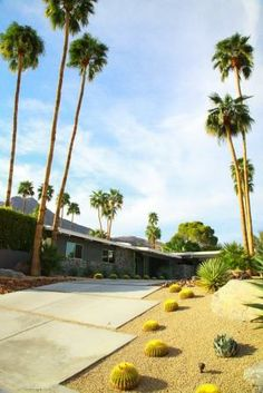 Archi mid-century @Michelle Conlon Springs, Californie