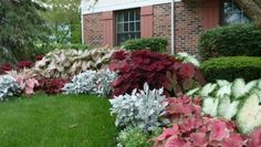 New Landscaping Shrubs Front Yard Shade Plants Ideas Landscaping Shrubs, Front Yard Landscaping, Landscaping Design, Modern Landscaping, Outdoor Landscaping, Backyard Landscape Design, Michigan Landscaping, Landscaping Costs, Landscaping Contractors