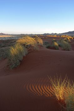 DESERTS !! Typical Scene in NamibRand Nature Reserve by Christian Goltz