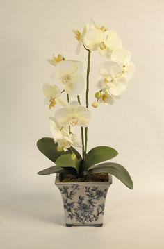 Artificial Silk Orchids in Pots - Florence - Pene Dene Flowers