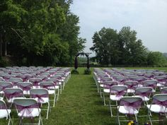 The touch of purple bows mades the plain white chairs look special and coordinated with the theme.
