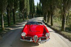 Alfa Romeo Giulia Spider Nostalgic