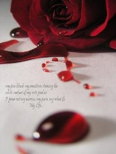This was just a stock photo that I edited. The rose was originally Red, and so was the 'blood' which I guess he did with corn syrup and red food colorin. Rose Wallpaper, Iphone Wallpaper, Bleeding Rose, Blood Art, Jolie Photo, Red Aesthetic, Purple Roses, Purple Haze, Dark Art