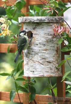 Bird housegreat use for the big coffe cans. Glue leaves and bark onto it. #birdhouses