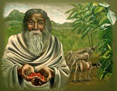 Do you know the history of coffee? You have a goat shepherd and his goats to thank for your favorite morning beverage. #coffee #thewaterguy