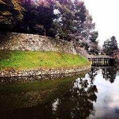 #彦根 からおはようございます(^-^)/ 何かウソをついて驚かそうかなと考えていましたが、結局思いつきませんでした(笑) しかし昨日の駆込みパワーすごかった。。 写真は彦根城。蕾膨らんできましたね! ▶️ページにいいねお願いします^ ^ http://www.facebook.com/itojingo