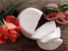 mozzarella-veg-di-soia