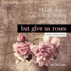 (Hearts Starve As Well As Bodies)   Designed with <3 by WoCaDo :: WOrds CAn DO >>> http://bit.ly/2k3xL4H