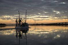 Sunrise on Apalachicola Beautiful Moments, Sunrise, In This Moment, River, Explore, Sunrises, Exploring, Sunrise Photography, Rivers