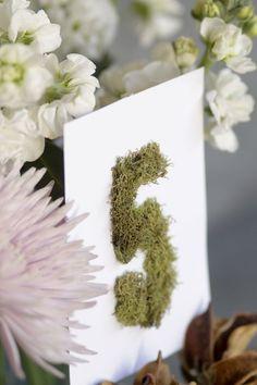 10 Stunning Ways to Use Moss in your Wedding - www.ebyhomestead.com