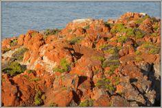 Fransmanshoek se brons klippe..