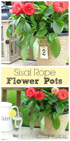Sisal Rope Flower Po