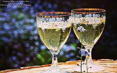 #wine #winebar #winetasting #winecountry #winestagram #wineanddine #winelover #winelovers #winenight #wineglass #wineoclock #winery #winetime #vino #vinotinto #wein #vineyard #vineyards #vinho #winewednesday #grapes #grapeseed #winecountry #vineyardvines #grapeseed #wineanddine #redwine #whitewine #glasses #champagne