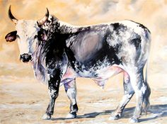 Nguni bull in oils - -Terry Kobus Bull Painting, Animal Paintings, Oil Paintings, African States, Cow Art, African Art, Cattle, Farm Animals, Bees