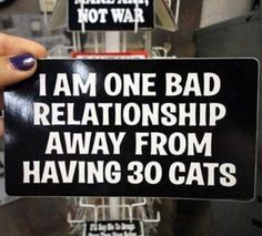 I am one bad relationship away from having 30 cats.   Share Inspire Quotes - Inspiring Quotes   Love Quotes   Funny Quotes   Quotes about Life