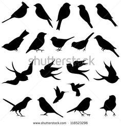 Colección vectorial de siluetas de aves
