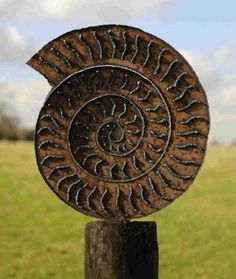 Outdoor sculpture by artist Peter M Clarke titled: 'Ammonite I