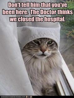 Don't tell him that you've been here.  The Doctor thinks we closed the hospital.