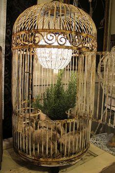 birdcage - via country roads